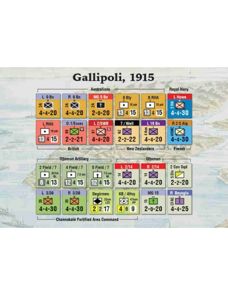 Wildlife Safari / Botswana / Loco!