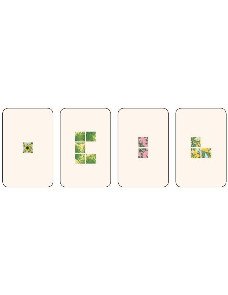 Legend Of The Five Rings CCG (L5R): Second City Starter Deck